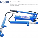GH – 300